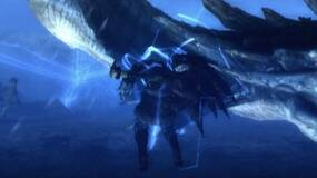 Image for Monster Hunter Tri servers on Wii shut down today