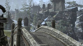 Image for The Elder Scrolls Online's M rating not ideal, but won't be challenged - Zenimax