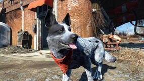 Image for Replace Dogmeat in Fallout 4 with Pirate the adorable Australian Cattle Dog