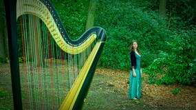 """Image for Make your weekend better: listen to this Harp performance of """"Fairy Fountain"""" from Zelda: OTT"""
