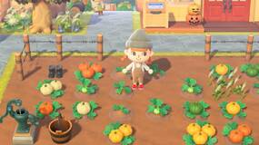 Image for Animal Crossing: New Horizons Pumpkin guide - How to grow different colours and find all the DIY recipes