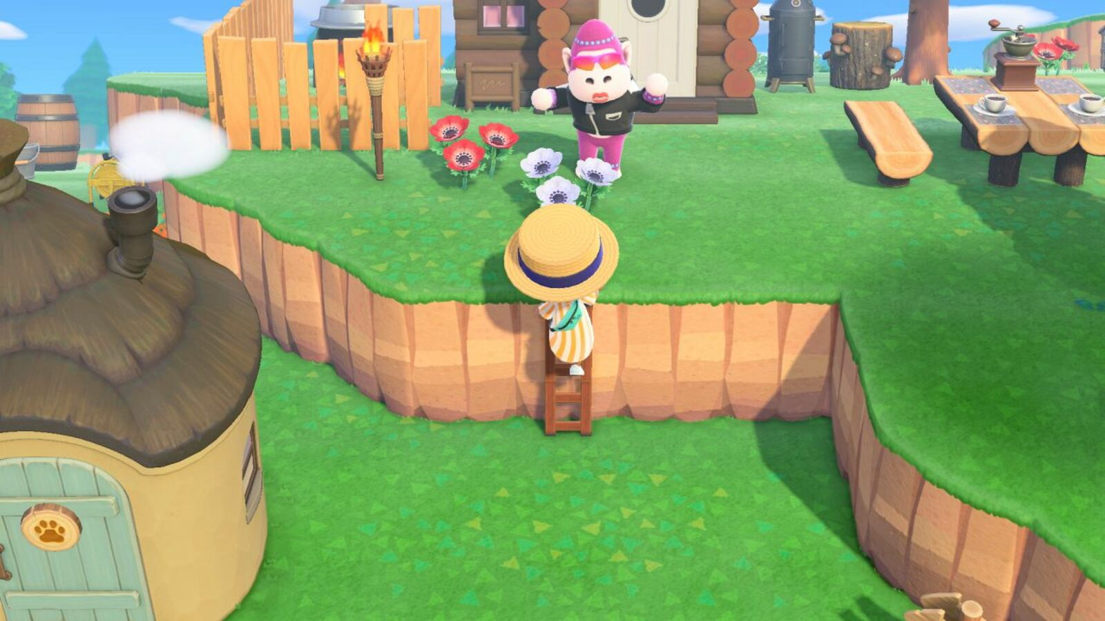 Animal Crossing New Horizons Ladder how to climb up ledges by ...