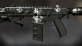 Image for Black Ops 2: Call of Duty Ghosts weapon camo could come to PC, next update in works