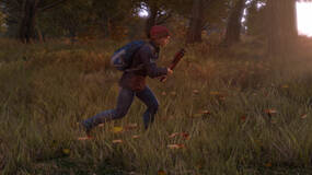 Image for Hackers may have DayZ standalone's source code, expect a cheat explosion