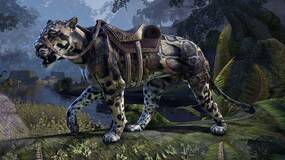 Image for The Elder Scrolls Online has reached 13.5 million players lifetime