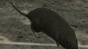 Image for Halo 3 rat mod has you desperately trying to gun down enemy vermin