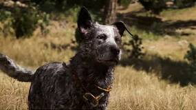Image for Far Cry 5 is the fastest selling title in franchise with $310 million in sales