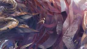 Image for Guild Wars 2 trial period extended, game goes on sale for a limited time