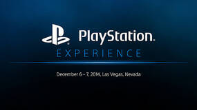 Image for Watch every panel from PlayStation Experience right here