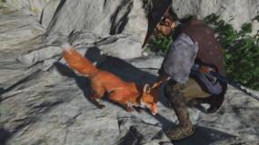 Image for Foxes are your friends in Ghost of Tsushima