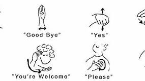 Image for Program which allows Kinect to read sign-language created