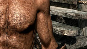 Image for Skyrim patch removes Dawnguard nudity