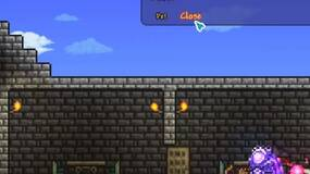 Image for Terraria: How to get a Cat License