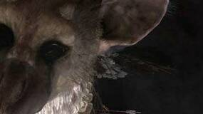 """Image for SCEE boss: """"I couldn't say"""" if Last Guardian was to appear at gamescom or TGS"""