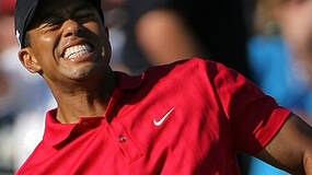 """Image for EA: Lack of Tiger Woods 11 Natal support down to """"timing"""""""