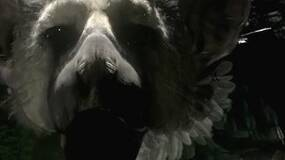 Image for Latest PSM3 issue gets hands on with The Last Guardian